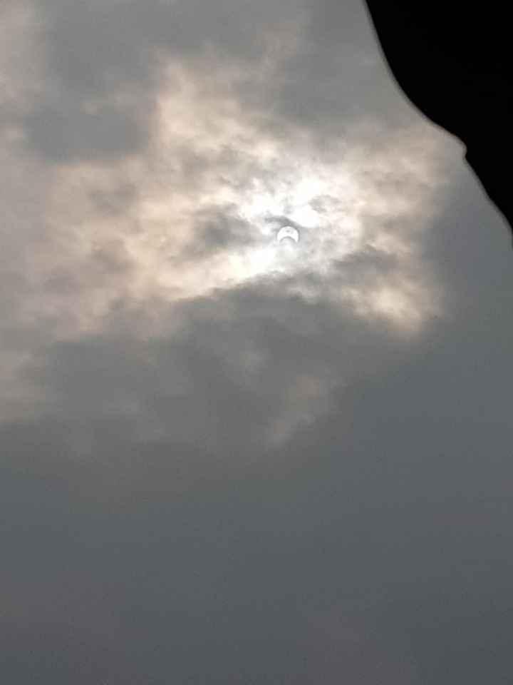 ☀ साल का आखरी सूर्य ग्रहण - ShareChat