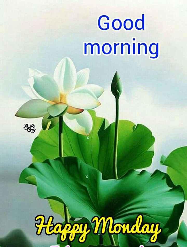 💐 सालगिरह❤ - Good morning Happy Monday 0 - ShareChat