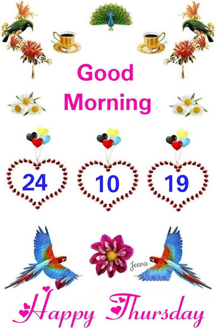 🌞सुप्रभात वीडियो 🌞 - ce Good Morning Jeeva S Happy Thursday - ShareChat