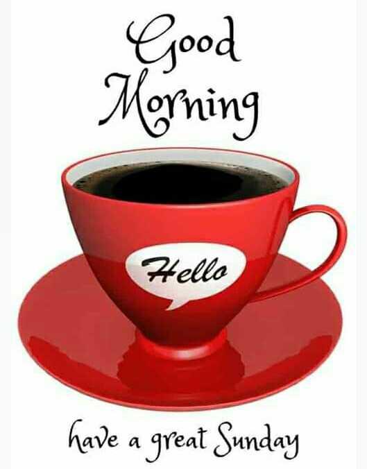 🌄सुप्रभात - Good Morning Hello have a great Sunday - ShareChat