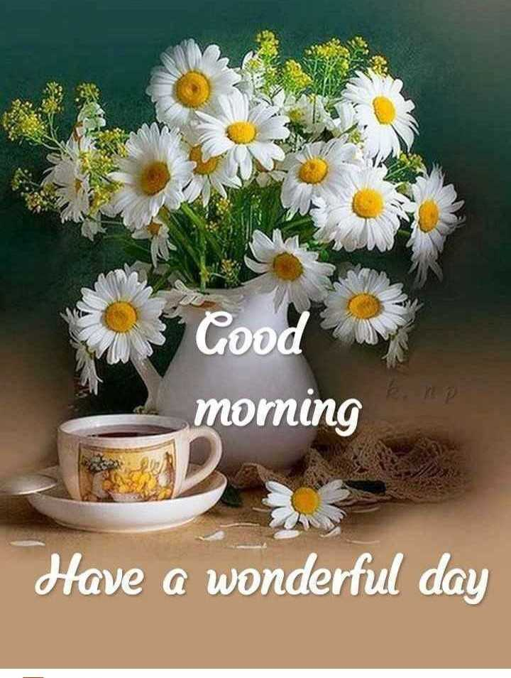 🌄सुप्रभात - Good morning Have a wonderful day - ShareChat