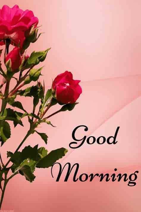 🌄सुप्रभात - a Good * Morning - ShareChat