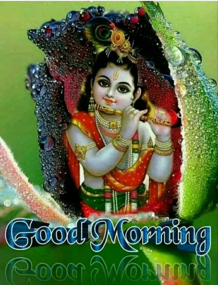 🌄सुप्रभात - Good Morning Poog WOW - ShareChat