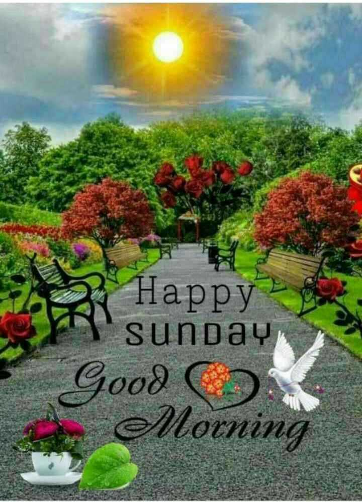 🌄सुप्रभात - Happy sunday Good Morning - ShareChat