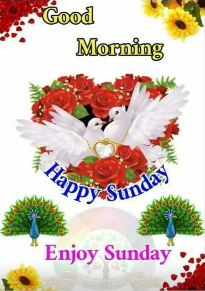 🌄सुप्रभात - Good Morning , Happ ? Ppy Suna Enjoy Sunday . . - ShareChat