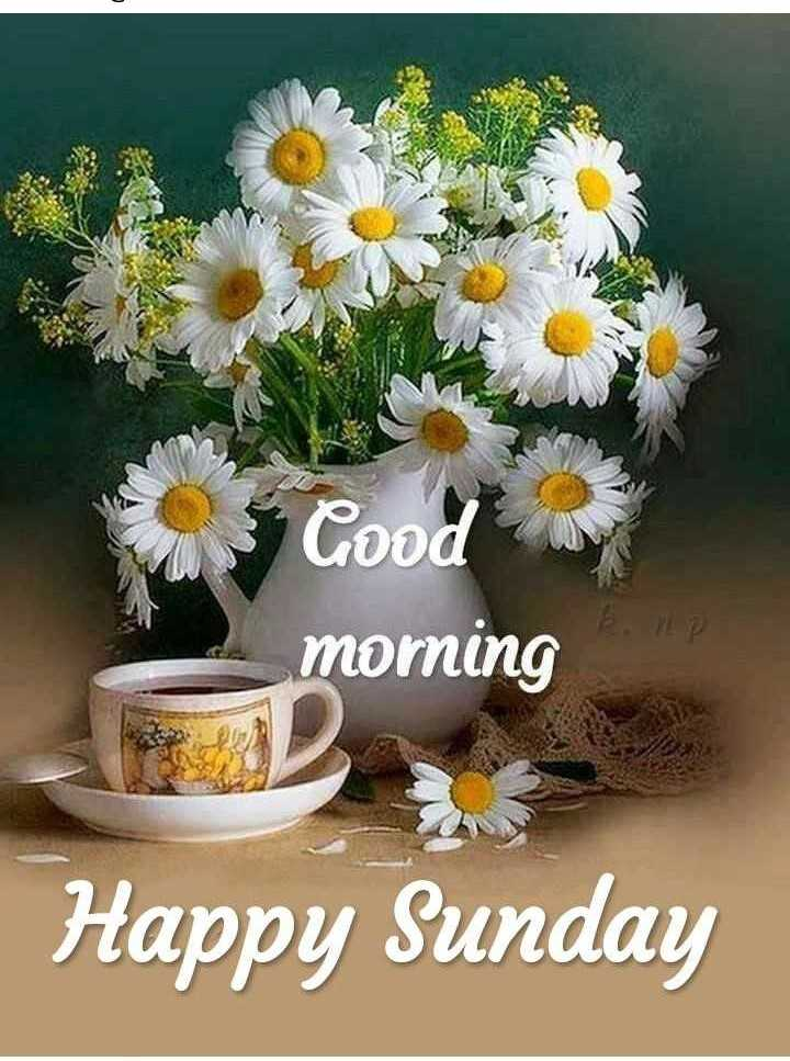 🌄सुप्रभात - Good morning AD Happy Sunday - ShareChat