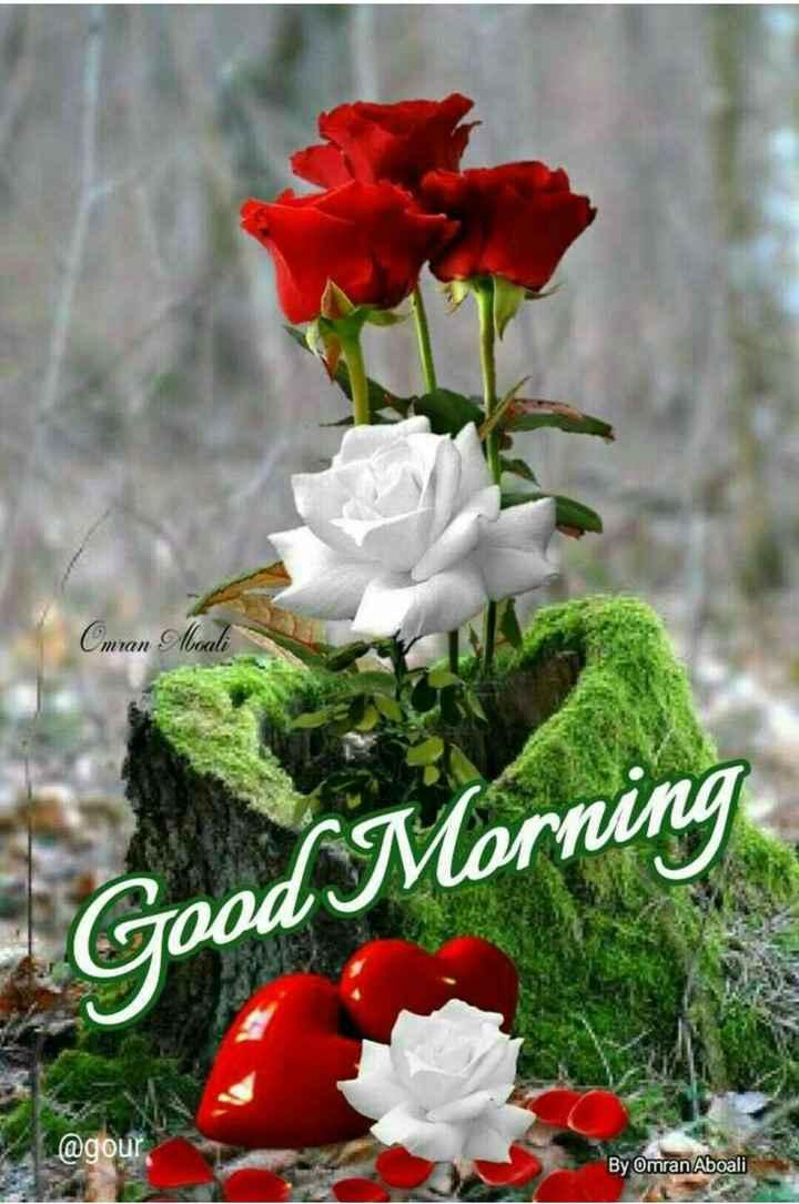 🌄सुप्रभात - Cmran Moali Good Morning @ gour By Omran Aboali - ShareChat