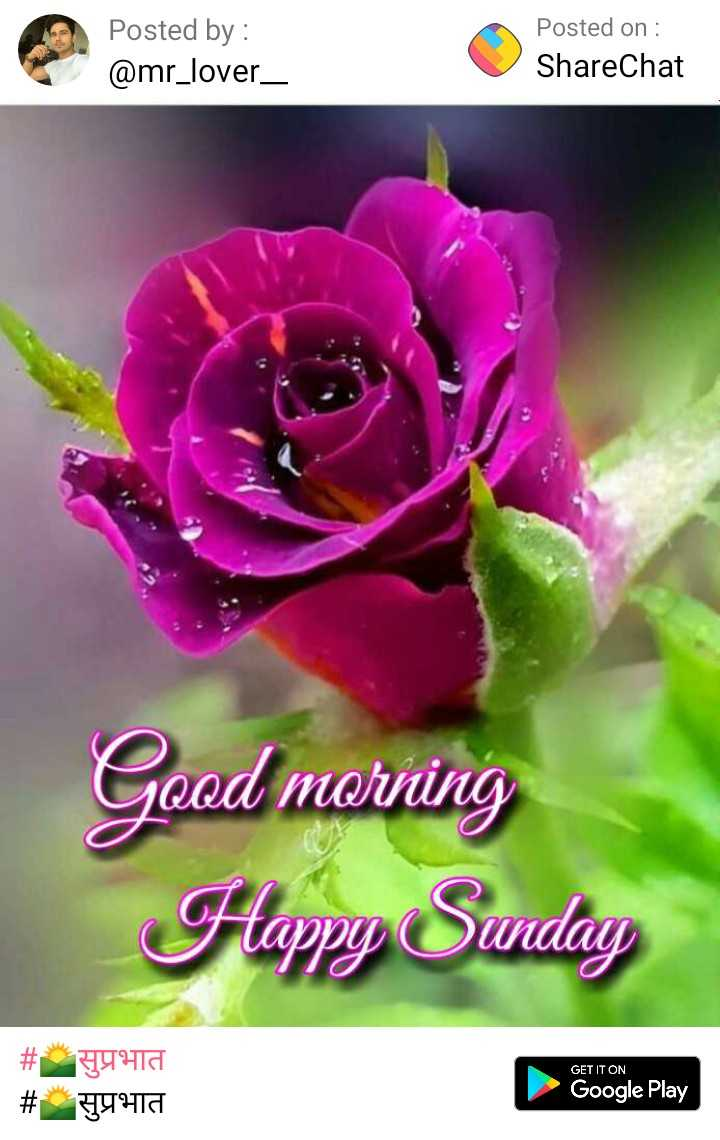 🌄सुप्रभात - Posted by : @ mr _ lover _ Posted on : ShareChat Good morning Happy Sunday GET IT ON # # 4910 44418 Google Play - ShareChat