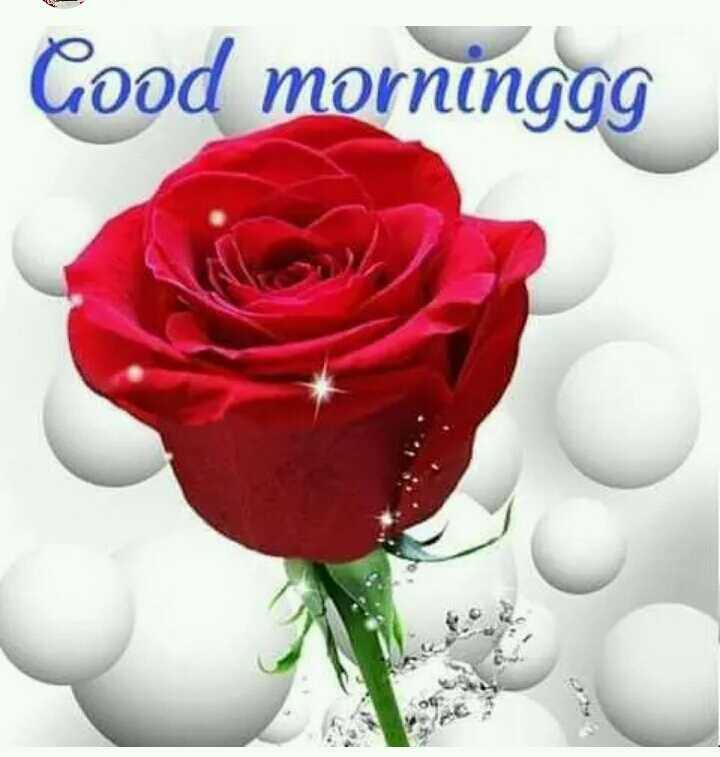 🌄  सुप्रभात - Good morninggg - ShareChat