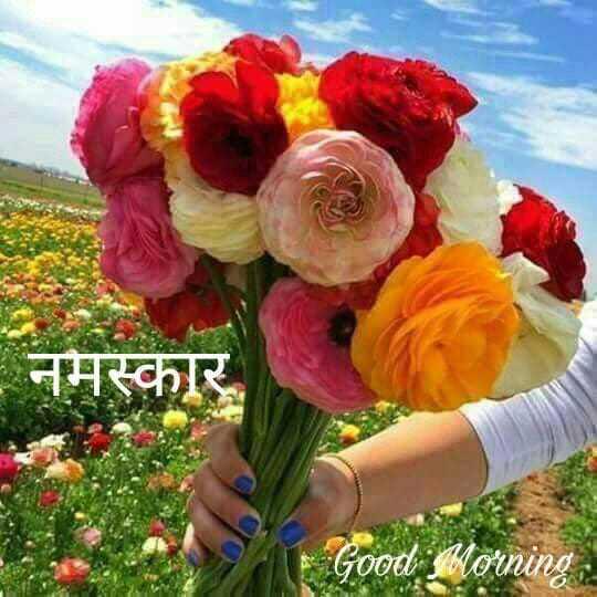 🌄सुप्रभात - नमस्कार Morning PM - ShareChat