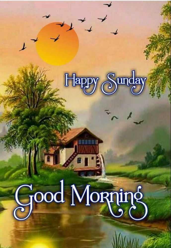 🌄सुप्रभात - Harry Sunday , Good Morning - ShareChat