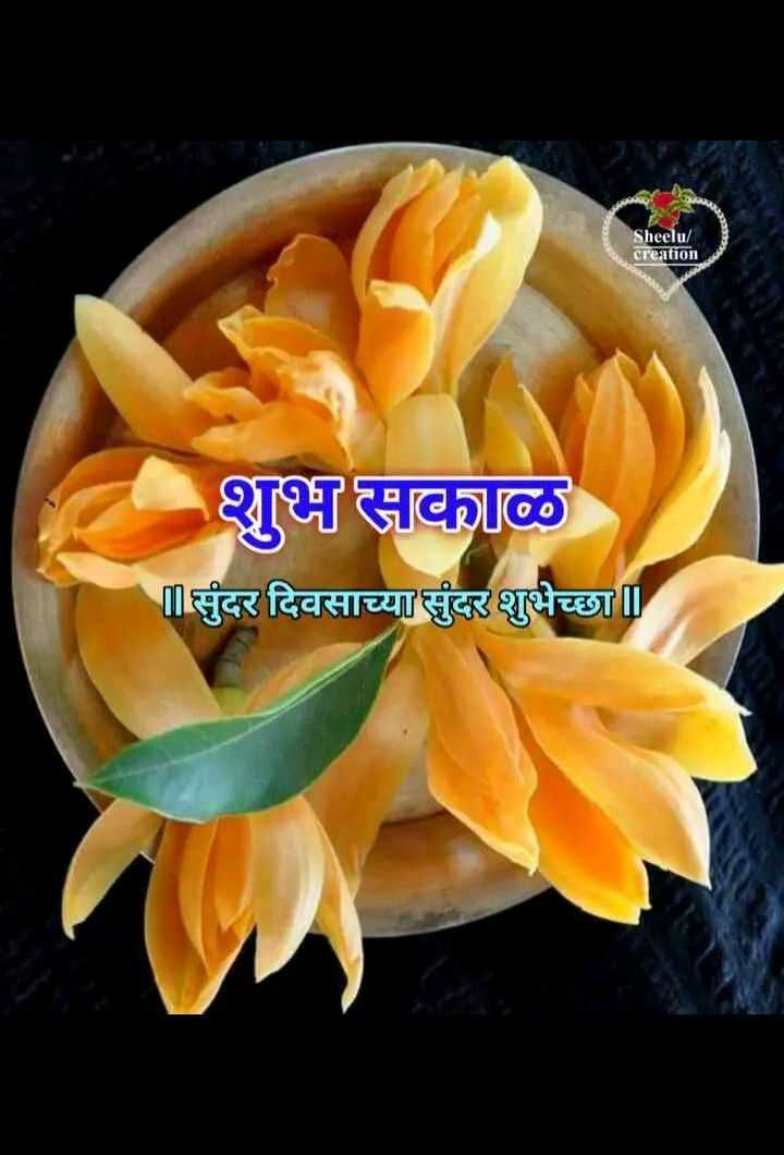 🌄सुप्रभात - Sheelu / creation शुभ सकाळ सुंदर दिवसाच्या सुंदर शुभेच्छा । - ShareChat