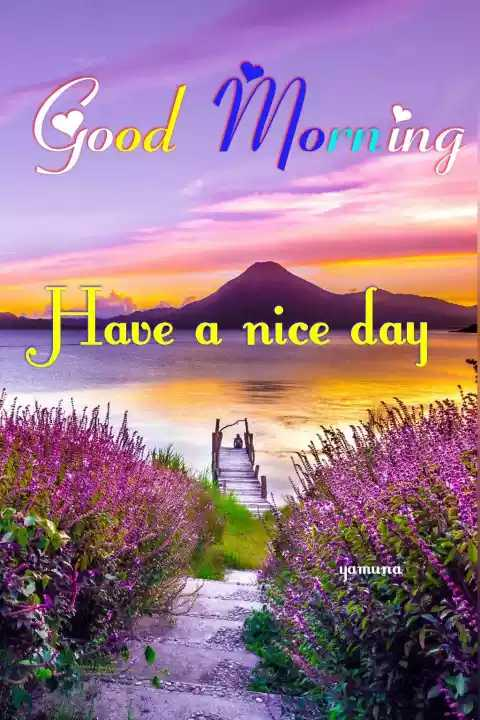 🌞सुप्रभात 🌞 - Good Morning Have a nice day yamuna - ShareChat