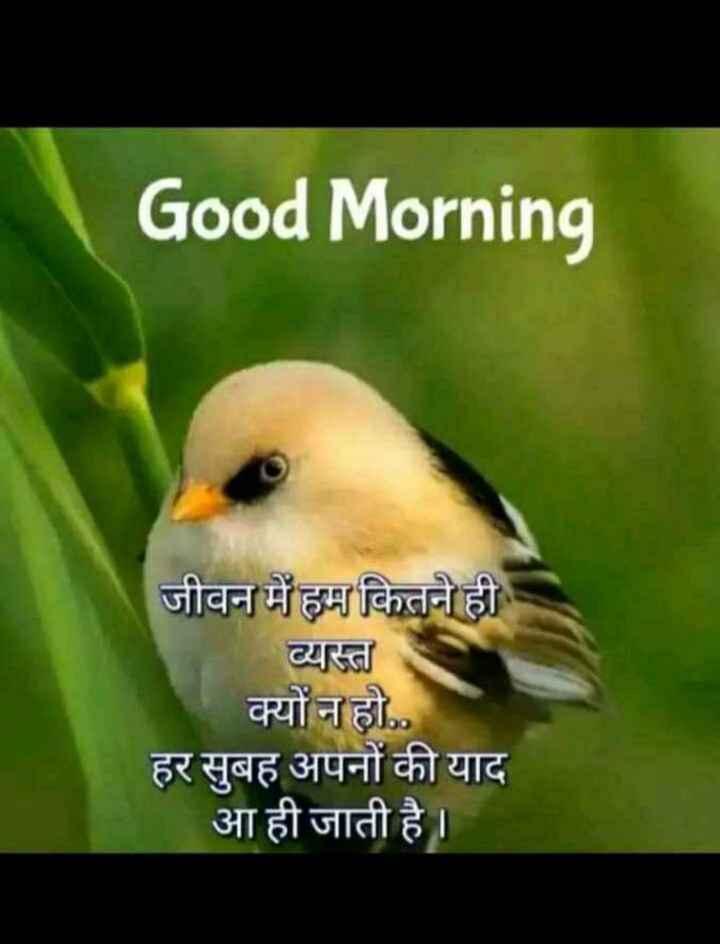 🌄  सुप्रभात - Good Morning जीवन में हम कितने ही व्यस्त क्यों न हो . . हर सुबह अपनों की याद आ ही जाती है । - ShareChat