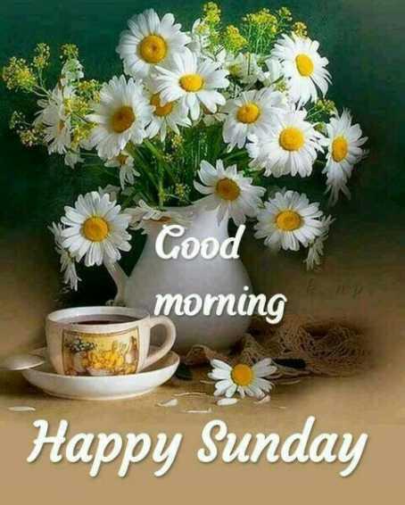 🌄सुप्रभात - Good morning Happy Sunday - ShareChat