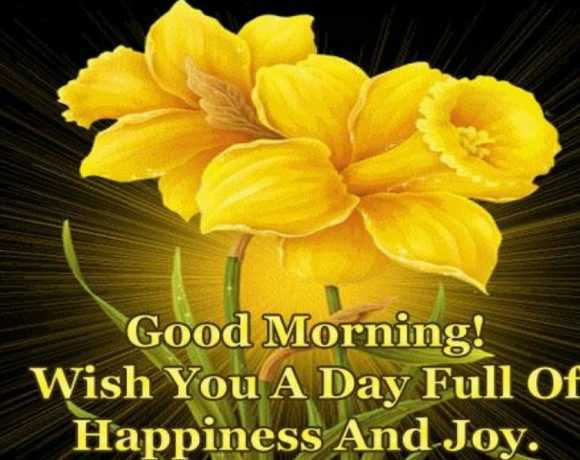 🌄सुप्रभात - Good Morning ! Wish You A Day Full Of Happiness And Joy . - ShareChat