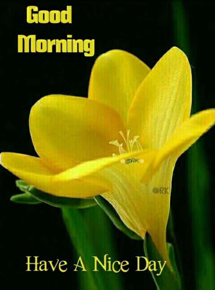 🌞 सुप्रभात 🌞 - Good Morning @ RK Have A Nice Day - ShareChat