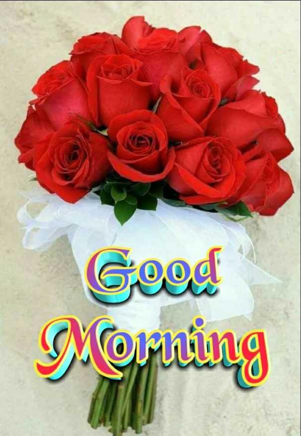 🌞 सुप्रभात 🌞 - Good Morning - ShareChat