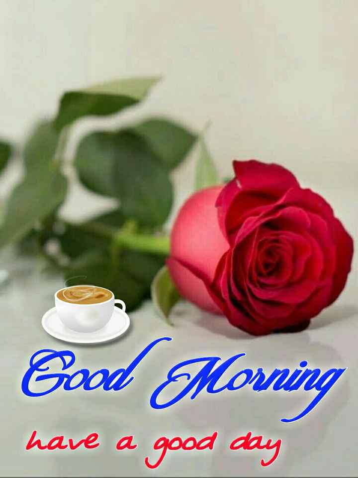 🌄सुप्रभात - Good Morning have a good day - ShareChat