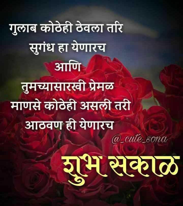 🌄सुप्रभात - गुलाब कोठेही ठेवला तरि सुगंध हा येणारच आणि तुमच्यासारखी प्रेमळ माणसे कोठेही असली तरी आठवण ही येणारच @ _ cute _ sona शुभ सकाळ - ShareChat