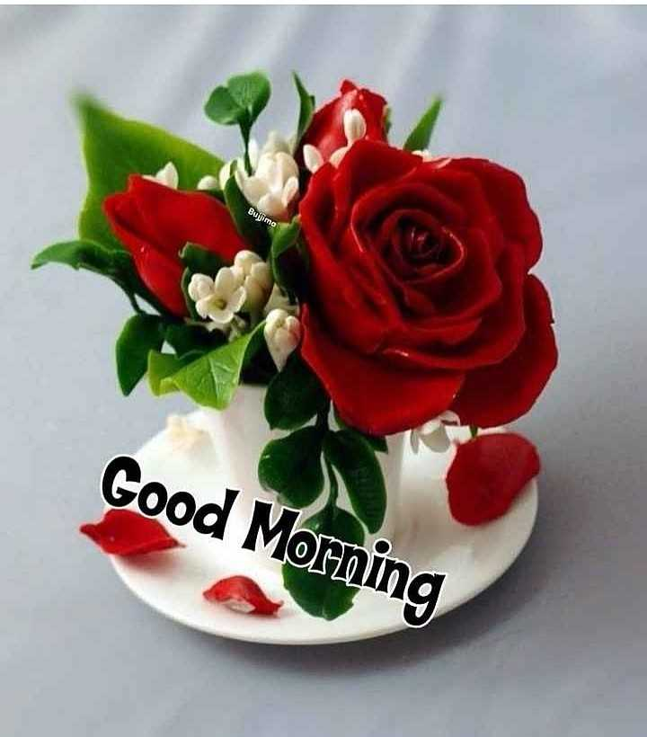 🌄सुप्रभात - Bujimo Good Morning - ShareChat
