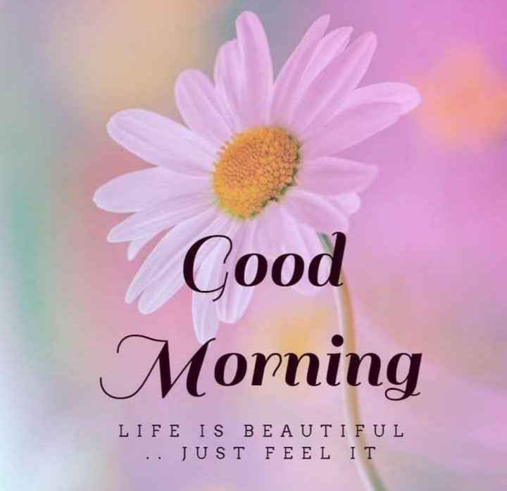 🌄सुप्रभात - Good Morning LIFE IS BEAUTIFUL . . JUST FEEL IT - ShareChat