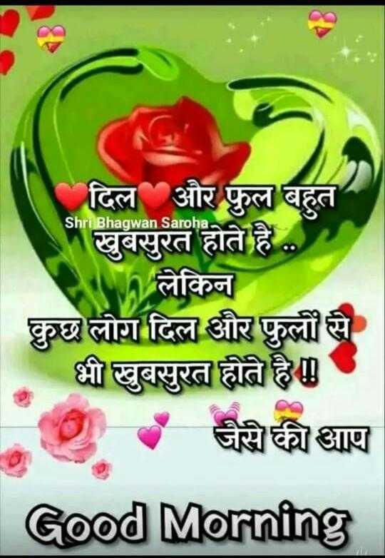 🌄सुप्रभात - Shri Bhagwan Saroha दिल और फुल बहुत खुबसुरत होते है . . . W लेकिन कुछ लोग दिल और फुली से भी खुबसुरत होते है । - जैसे की आप Good Morning - ShareChat