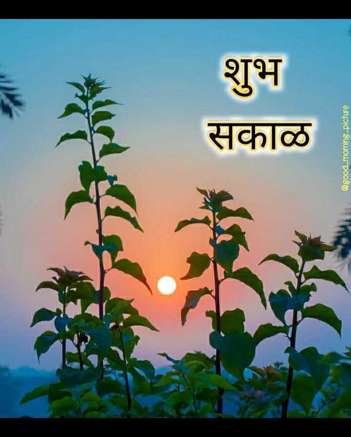 🌄सुप्रभात - सकाळ शुभ @ good morning - picture - ShareChat