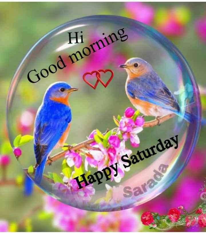 🌄  सुप्रभात - Good morning Happy Saturday Sarada - ShareChat