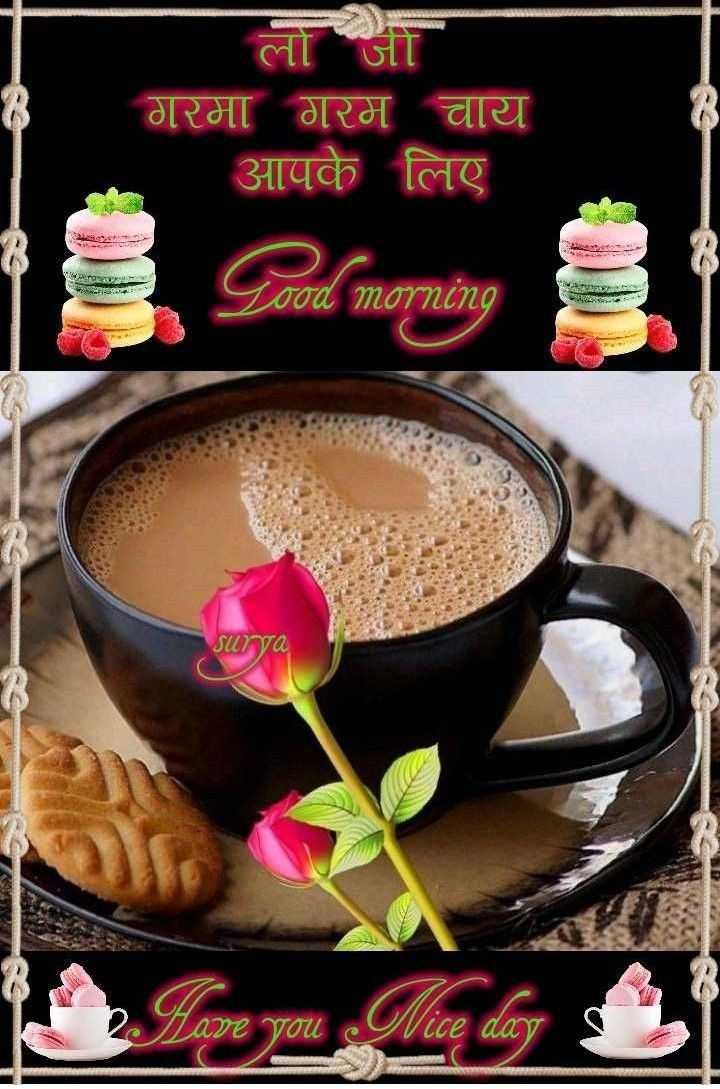 🌞सुप्रभात🌞 - लो जी गरमा गरम चाय आपके लिए ASURES zood morning surya 2 Lave you are you Nice day o CCP - ShareChat