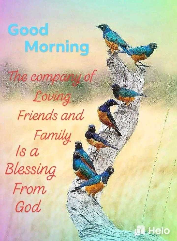 🌄सुप्रभात - Good Morning The company of Loving Friends and Family Is a   Blessing From God * - ShareChat