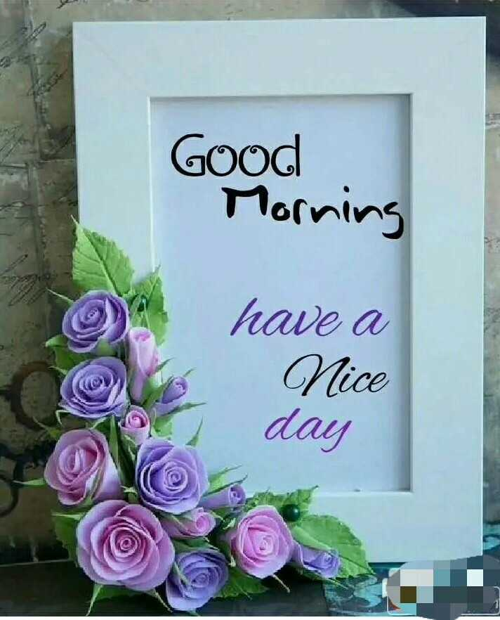 🌄सुप्रभात - Good Morning have a Nice day - ShareChat