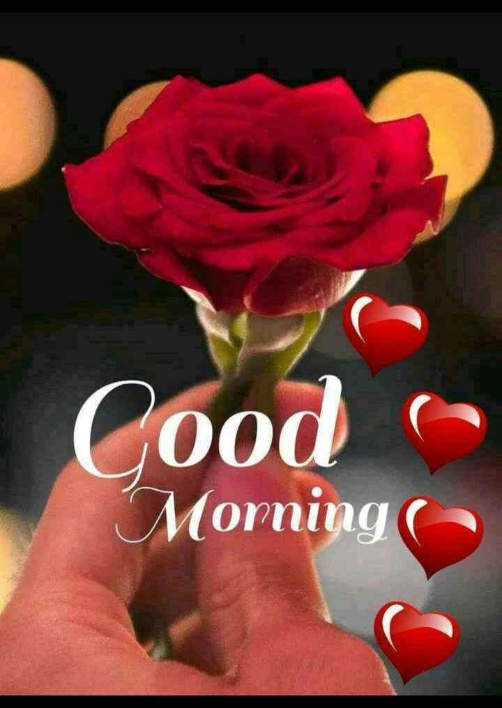 🌄सुप्रभात - ood Morning ( - ShareChat