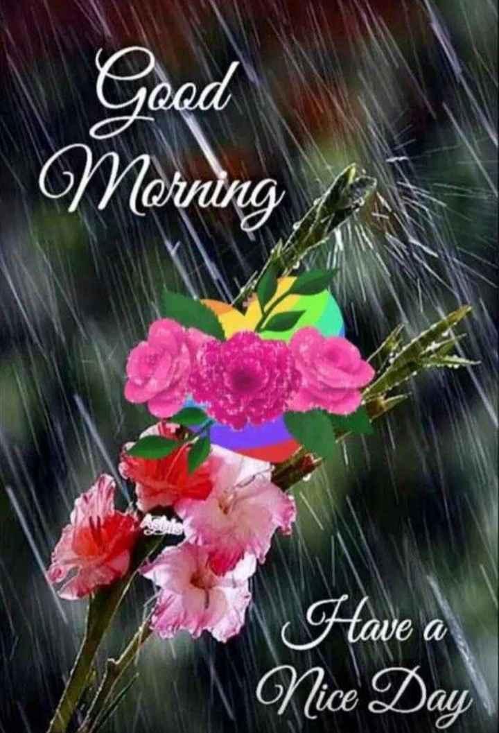 🌄सुप्रभात - Good Morning Have a Nice Day - ShareChat