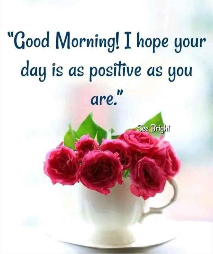 🌄सुप्रभात - Good Morning ! I hope your day is as positive as you are . See Brighii - ShareChat