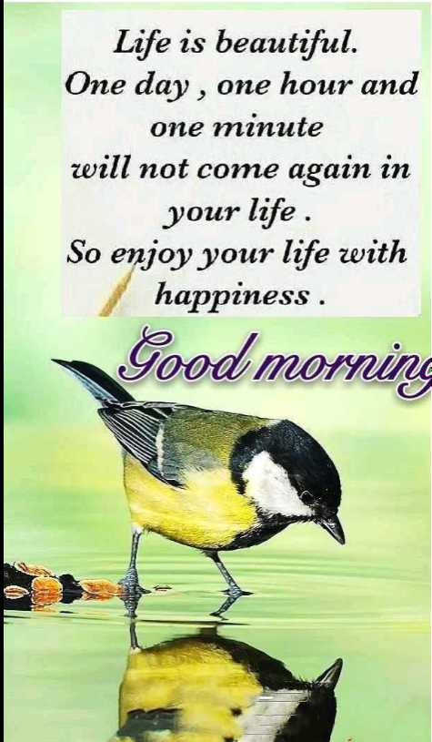 🌄सुप्रभात - Life is beautiful . One day , one hour and one minute will not come again in your life So enjoy your life with happiness . Good morning - ShareChat