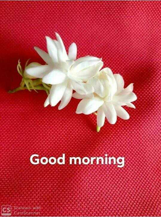 🌄सुप्रभात - Good morning CS Scanne CamScanner - ShareChat