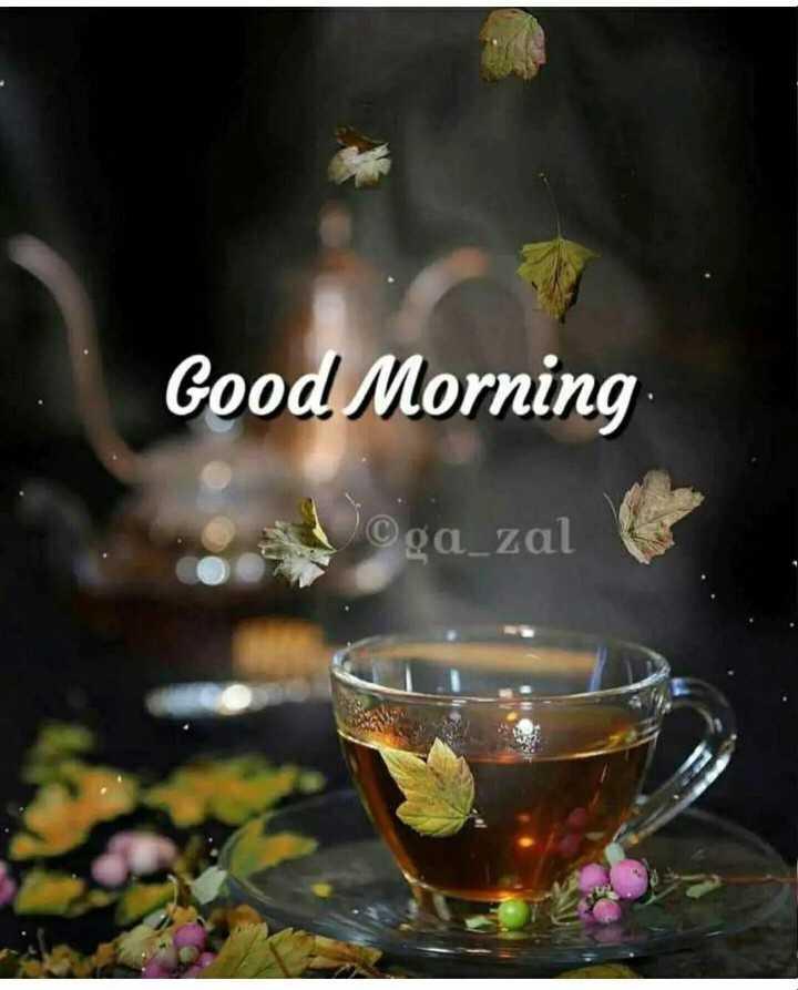 🌄सुप्रभात - Good Morning ©ga _ zal - ShareChat