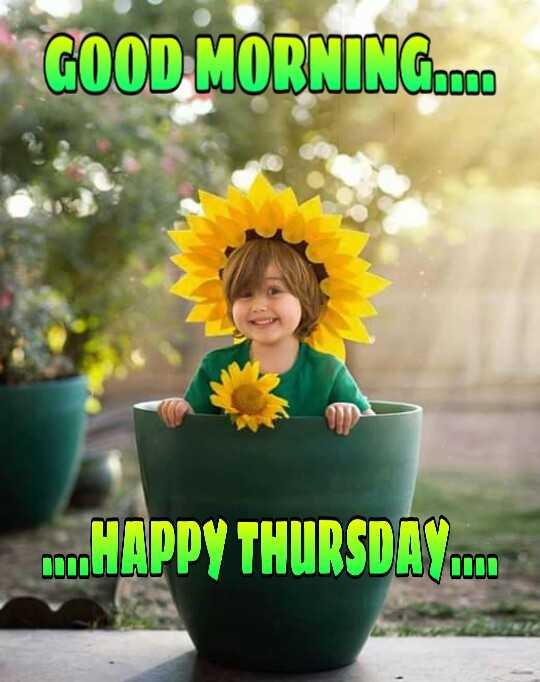 🌄सुप्रभात - GOOD MORNINGCOCO HAPPY THURSDAY C . . - ShareChat