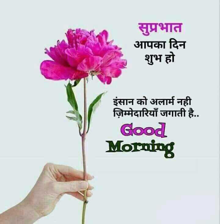 🌞 सुप्रभात 🌞 - सुप्रभात आपका दिन शुभ हो इंसान को अलार्म नही ज़िम्मेदारियाँ जगाती है . . Good Morning - ShareChat