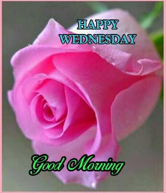 🌄सुप्रभात - HAPPY WEDNESDAY Good Morning - ShareChat