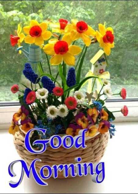 🌞 सुप्रभात - Good Morning - ShareChat