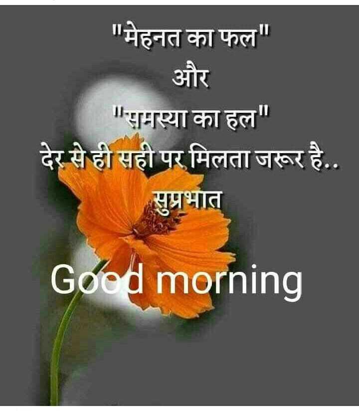 🌞सुप्रभात🌞 - मेहनत का फल और समस्या का हल देर से ही सही पर मिलता जरूर है . . सुप्रभात Good morning - ShareChat