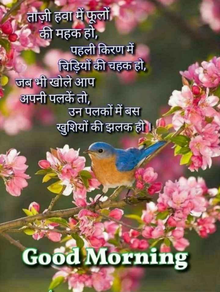 🌞सुप्रभात🌞 - । ताज़ी हवा में फूलों की महक हो , पहली किरण में चिड़ियों की चहक हो , Dजब भी खोले आप अपनी पलकें तो , उन पलकों में बस खुशियों की झलक हो । Good Morning - ShareChat
