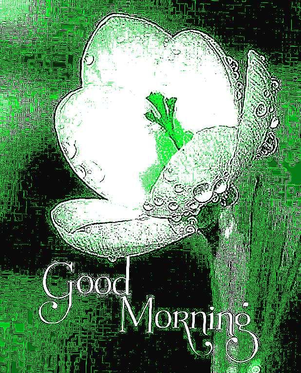 🌄सुप्रभात - SK Good Morning - ShareChat