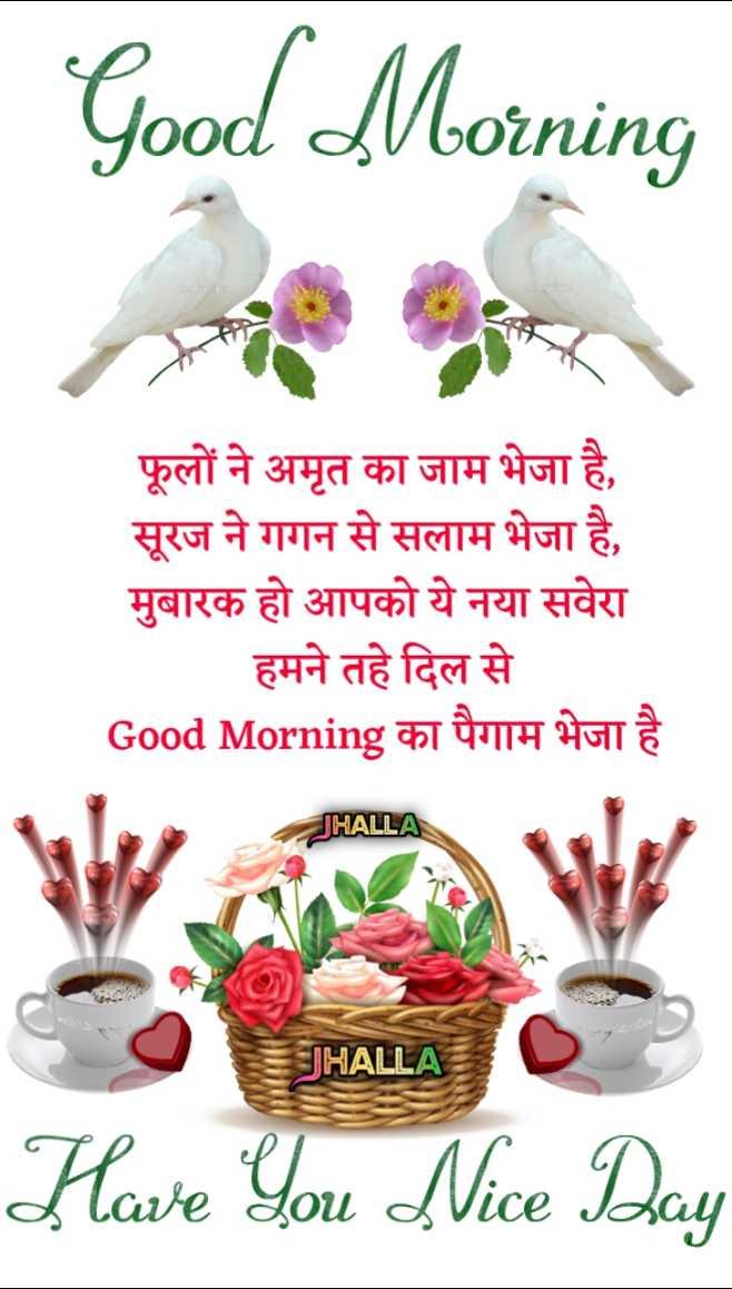 🌞 सुप्रभात 🌞 - Good Morning फूलों ने अमृत का जाम भेजा है , सूरज ने गगन से सलाम भेजा है , मुबारक हो आपको ये नया सवेरा हमने तहे दिल से Good Morning का पैगाम भेजा है JHALLA JHALLA O HALLA C Have You Nice Day - ShareChat