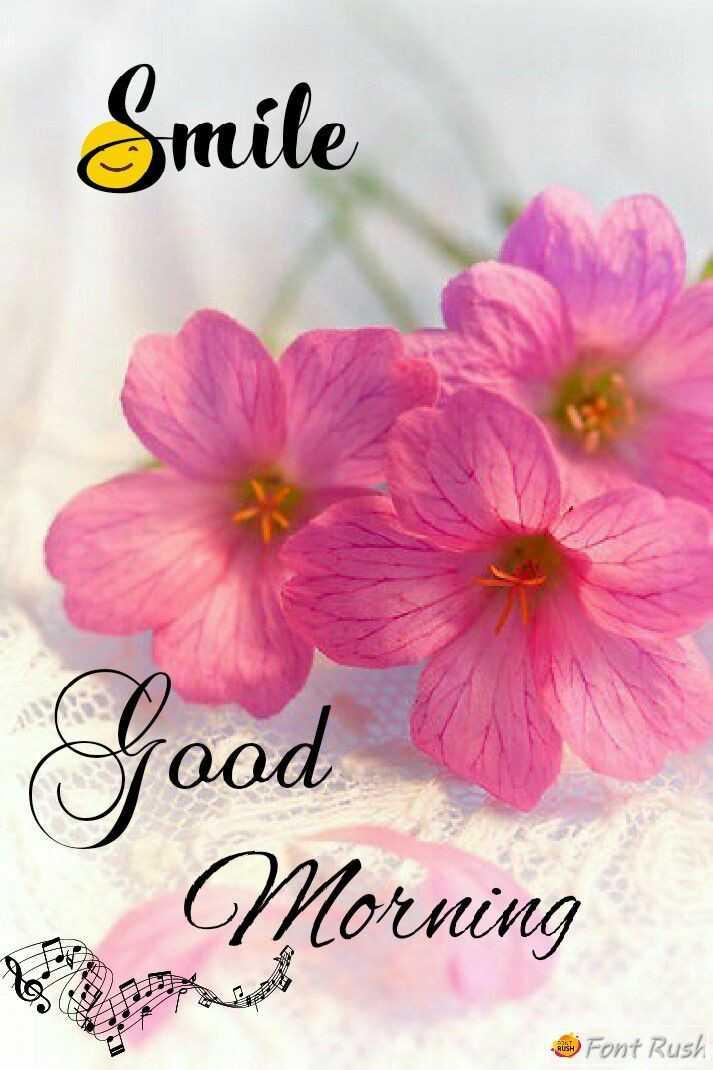 🌄सुप्रभात - Smile Good Morning ) Font Rush - ShareChat