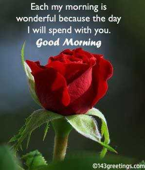 🌞सुप्रभात🌞 - Each my morning is wonderful because the day I will spend with you . Good Morning ©143 greetings . com - ShareChat
