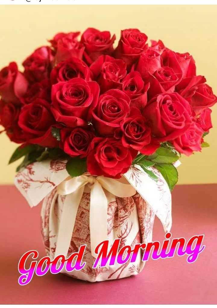 🌄सुप्रभात - Morning GOOA MOYO - ShareChat