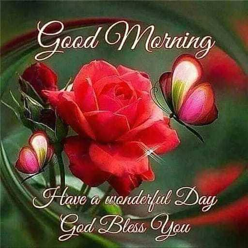 🌄सुप्रभात - Good Morning Have a wonderful Day God Bless You - ShareChat